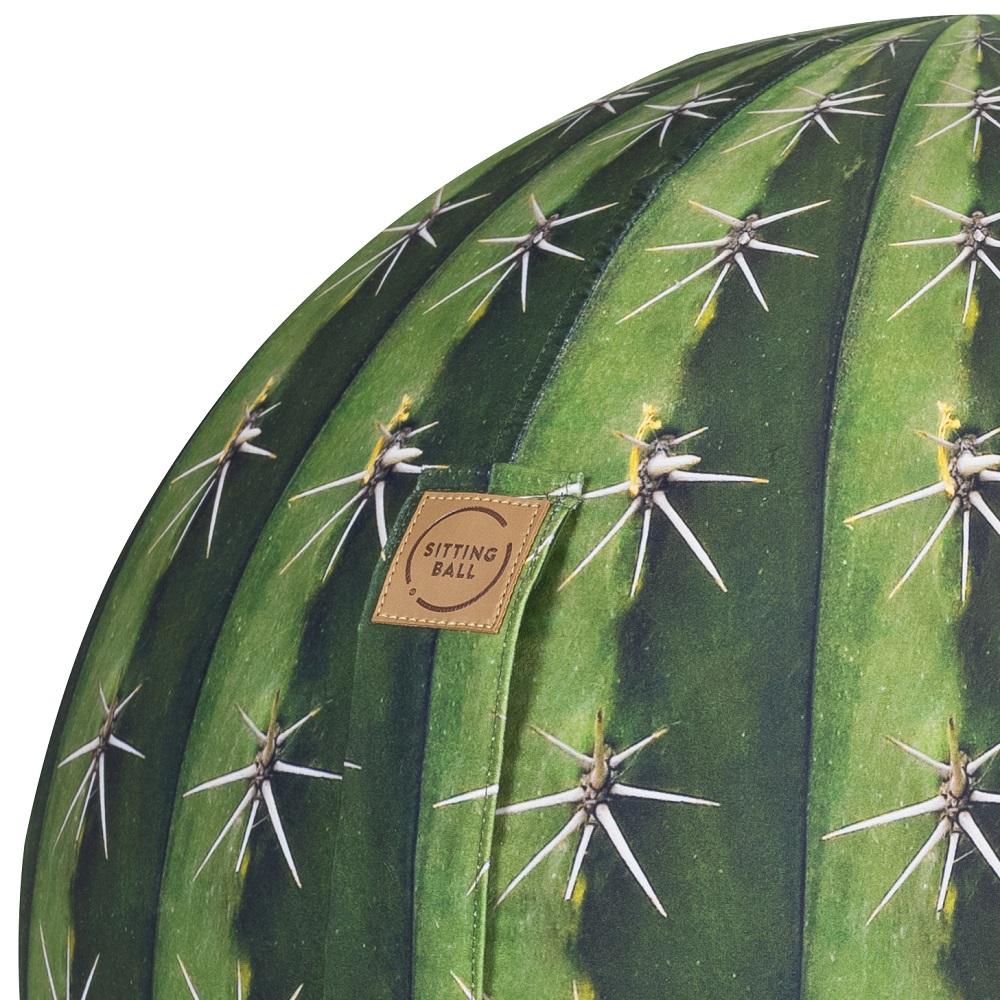 Sitting Ball Kaktus